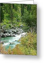 Snoqualmie River Greeting Card
