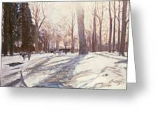 Snow At Broadlands Greeting Card by Paul Stewart