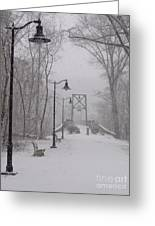 Snow At Bulls Island - 05 Greeting Card
