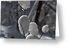 Snow Balls. Greeting Card