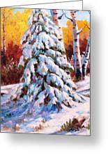 Snow Blanket Greeting Card
