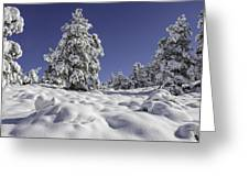 Snow Bomb Greeting Card