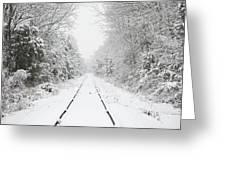 Snow Bound Greeting Card by Nancy Edwards