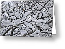 Snow Branches 2-1-15 Greeting Card