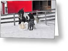 Snow Buddies Greeting Card