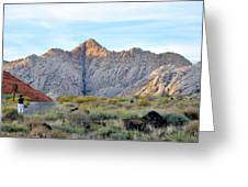 Snow Canyon Greeting Card