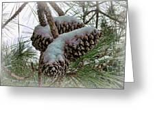Snow Cones Greeting Card