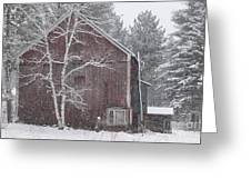 Snow Covered Birch Tree And A Red Barn. Greeting Card