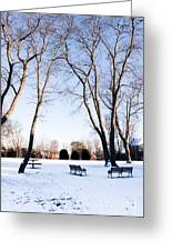 Snow Covered Green Greeting Card