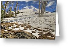 Snow Covered Mount Hood In Oregon Greeting Card
