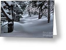 Snow Covered Trail Greeting Card
