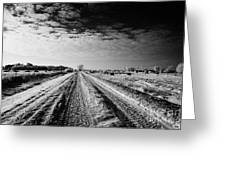 snow covered untreated rural small road in Forget Saskatchewan Canada Greeting Card