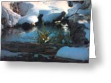 Snow Covered Waterscape Greeting Card