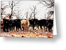 Snow Cows II Greeting Card