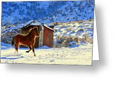 Snow Dancer  Greeting Card