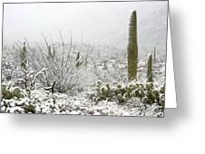 Snow Day In The Desert  Greeting Card by Saija  Lehtonen