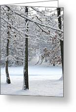 Snow Day Iv Greeting Card