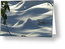Snow Dunes Greeting Card