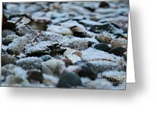 Snow Dusted Greeting Card