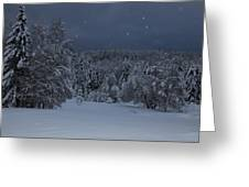 Snow Falling In A Forest Greeting Card