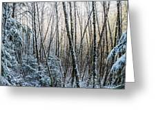 Snow Falls On The Alders  Astoria Greeting Card