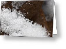 Snow Flake Macro 2 Greeting Card