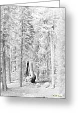 Snow Impressions Greeting Card