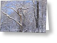 Snow In Connecticut Greeting Card