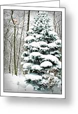 Snow In Ohio Greeting Card