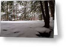 Snow In Shade  Greeting Card