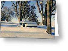 Snow In The Park Greeting Card