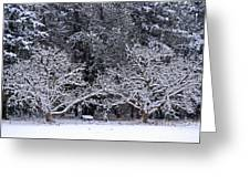 Snow In The Valley Greeting Card