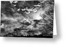 Snow Is In The Air Bw Greeting Card