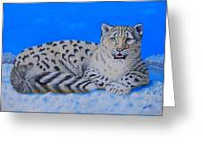 Snow Leopard Greeting Card by David Hawkes
