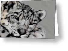Snow Leopard Digital Art Greeting Card