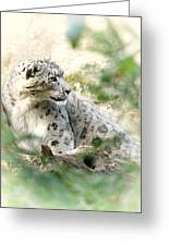 Snow Leopard Pose Greeting Card