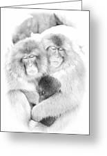 Snow Monkey Character Study Vi Greeting Card