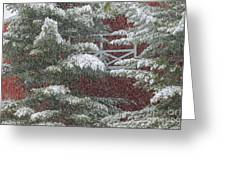 Snow On A Pine Tree With A Red Barn. Greeting Card