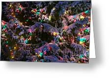 Snow On The Christmas Tree Greeting Card