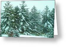 Snow On The Evergreens Greeting Card
