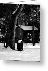 Snow On Tire Swing Greeting Card