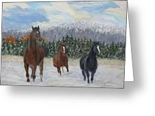 Snow Runners Greeting Card