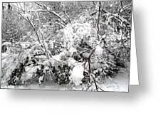 Snow Scene 4 Greeting Card