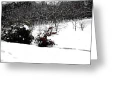 Snow Scene 6 Greeting Card