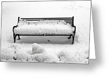 Snow Scene 8 Greeting Card by Patrick J Murphy