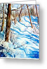 Snow Shadows Greeting Card