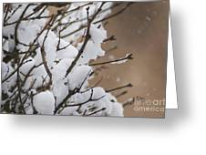 Snow Shower Greeting Card