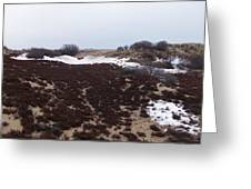 Snow Spotted Dunes Greeting Card