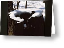 Snow Topping Log Greeting Card