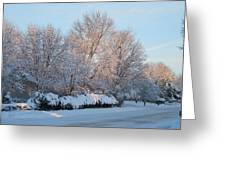 Snow Trees Sunrise 2-2-15 Greeting Card